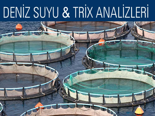 Deniz Suyu Trix analizleri